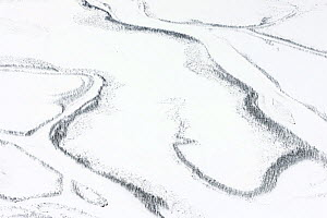 Aerial view oof  snow-covered Rapa delta. The river channels are bordered  by narrow strips of Mountain birch (Betula pubescens) forest. Laponia UNESCO World Heritage Site, Lapland, Sweden. Highly com...  -  Orsolya Haarberg