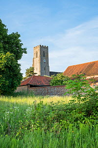 The Church of St Martins, Hindringham Village, Norfolk, England, UK. June 2017.  -  Gary  K. Smith