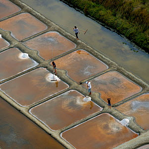 People collecting salt from salt evaporation ponds and child waving, Olonne, Vendee, France, July.  -  Loic  Poidevin