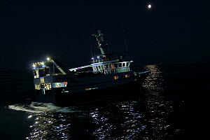 Fishing on a bright moonlit night, North Sea, June 2016.  Property released  -  Philip  Stephen