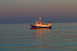 Flat calm over the North Sea with fishing vessel 'Ocean harvest' hauling gear on board. North sea. May 2016. Property released.  -  Philip  Stephen
