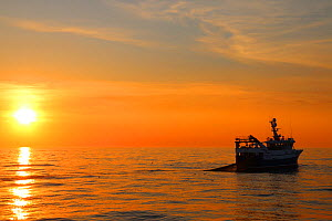 """Sun setting over the North sea with fishing vessel 'Ocean Harvest"""" hauling gear on board. North Sea, May 2016. Property released.  -  Philip  Stephen"""