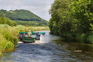 Weed-cutting machine on the Tennant Canal, where it passes through the Pant y Sais Nature Reserve, Glamorgan, South Wales, UK, June 2017.  -  Chris Mattison