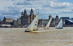 Clipper Round the World Race 2017-18 showing 3 yachts passing the Three Graces on the Liverpool waterfront on Sunday 20th August 2017 just after the start of the race. Liverpool, Merseyside, UK  -  Alan  Williams