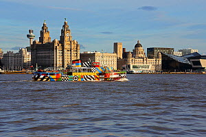 Mersey Ferry 'Snowdrop' on the River Mersey passing the Three Graces Buildings, Liverpool waterfront, UK, December 2015 - Alan  Williams