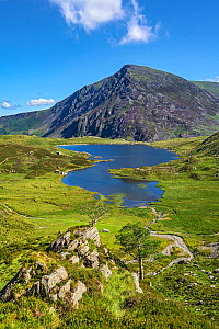 Llyn Idwal viewed from the path up to the Devil's Kitchen with Pen yr Ole Wen in the background, Snowdonia National Park, North Wales, UK, July 2017  -  Alan  Williams