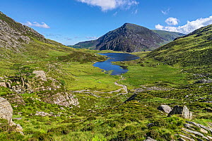 Llyn Idwal viewed from the path up to the Devil's Kitchen, with Pen yr Ole Wen in the background, Snowdonia National Park, North Wales, UK, July 2017  -  Alan  Williams