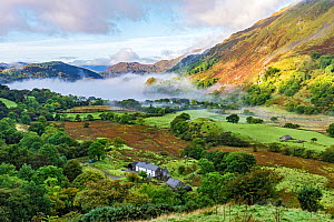 Early morning mist in the Gwynant Valley looking south west over Llynn Gwynant, Snowdonia National Park, North Wales, UK, September 2017  -  Alan  Williams