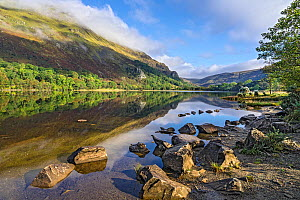 Reflections in Llyn Gwynant in the Glaslyn Valley looking north east, with Gallt y Wenallt covered in mist on the left. Snowdonia National Park, North Wales, UK, September 2017  -  Alan  Williams