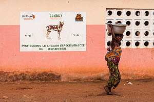 Woman carrying baby on her back and a large bowl of water on her head walking past school with painting promoting protection for  the African Wild Dog / Painted Dog (Lycaon pictus)  endangered and ver... - Christophe Courteau