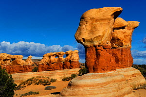 Rock formation caused by erosion in sandstone, Devils Garden, Grand Staircase-Escalante National Monument, Utah, USA, March 2014. - Jouan Rius