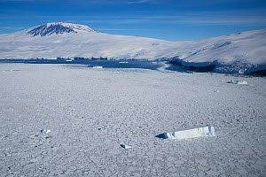 Sea ice and iceberg, Mount Erebus, Ross Island, Ross Sea, Antarctica. Photographed for The Freshwater Project  -  Michel  Roggo