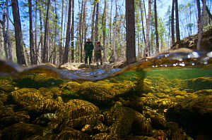 Split level view of the Temnik River with the guides in the background, Temnik River, Baikal Nature Reserve, Buryatia, Siberia, Russia, May 2015. - Michel  Roggo
