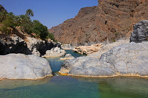 Wadi Al Arbiyeen Muscat Governorate, Sultanate of Oman, February 2015. Photographed for The Freshwater Project - Michel  Roggo