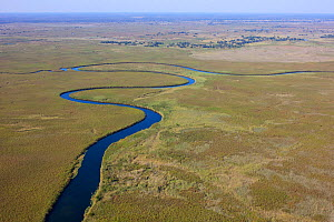 Aerial view of the Okavango Delta, with high water level, Botswana,  June 2014. Photographed for The Freshwater Project  -  Michel  Roggo