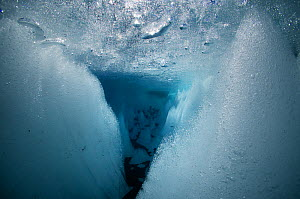 Underwater view of cryoconite hole, a hole formed by windblown dust and particles which warm up ice of glacier and creates meltwater holes. Gorner Glacier, Valais Alps, Canton Valais / Wallis, Switzer... - Michel  Roggo