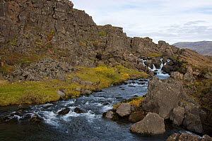 Oxara river, in the rift between the North American and Eurasian  tectonic plates at Thingvellir, Thingvellir National Park, UNESCO World Heritage Site, Iceland. September 2009. Photographed for the F...  -  Michel  Roggo