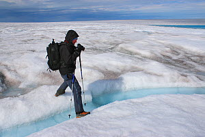 Photographer Michel Roggo at work on the ice cap above the Sermeq Kujalleq Glacier, close to the Kangia River, Ilulissat Icefjord UNESCO World Heritage Site, Sermersuaq / Greenland ice sheet, Greenlan...  -  Michel  Roggo