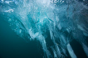 Underwater view of iceberg, Ilulissat Icefjord UNESCO World Heritage Site, Greenland, August 2014. Photographed for The Freshwater Project  -  Michel  Roggo