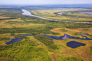Aerial view of the Pantanal, at the end of the dry season, area of the Rio Paraguay, Brazil. Photographed for The Freshwater Project - Michel  Roggo