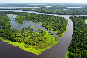 Aerial view of flooded forests, Anavilhanas Archipelago, Anavilhanas National Park, in the Rio Negro, Amazonas, Brazil February 2011. Photographed for The Freshwater Project  -  Michel  Roggo