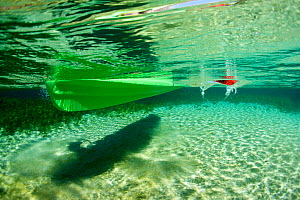Underwater view of kayak and paddle, Rainbow Springs, Rainbow Springs State Park, Florida, USA. January 2012. Photographed for The Freshwater Project - Michel  Roggo