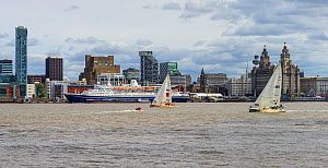 Clipper Round the World Race 2017-18. Two yachts passing the Liverpool waterfront just after the start of the race, with the Marco Polo cruise ship moored at the Pier Head landing stage. Merseyside, U...  -  Alan  Williams