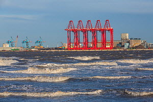 New cranes for handling ship containers at the new container terminal at Seaforth Docks, Port of Liverpool, UK. January, 2016  -  Alan  Williams