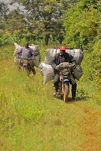 Kalenjin men carrying charcoal on motorbike, Kenya, July - John Cancalosi