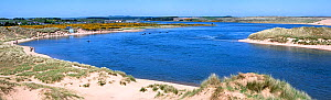 Ythan Estuary at Forvie National Nature Reserve / Sands of Forvie, Newburgh, Aberdeenshire, Scotland, UK, May - Philippe Clement