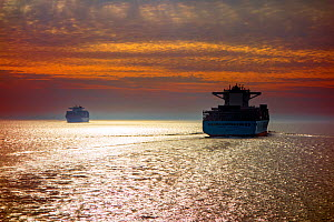 Two container ships / cargo vessels sailing at sunset, North Sea  -  Philippe Clement
