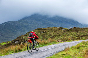 Lone biker cycling through the Scottish Highlands on heavily laden touring bicycle along single track road, Scotland, UK, May - Philippe Clement