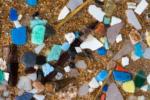 Marine microplastics (particles with upper size limit of 5mm) washed up on a beach in  Pembrokeshire, Wales, UK. January. - Alex  Hyde