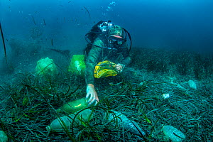 Scuba diver removing plastic marine litter from the sea bed.  Mljet National Park, Mljet  Island, Croatia. May 2015.  -  Arne Hodalic
