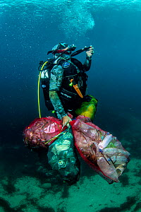 Scuba diver removing plastic marine litter from the sea bed.  Mljet National Park, Mljet  Island, Croatia. May 2015. Model released.  -  Arne Hodalic