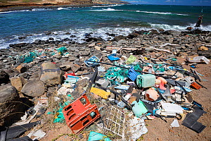 Plastic waste discarded at sea washed up by trade winds onto Molokai Island, Hawaii. July.  -  David  Fleetham