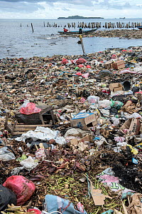Marine pollution on beach near Sorong Fish Market, Bos Wesen Market, Sorong, West Papua, Indonesia  -  Pete Oxford