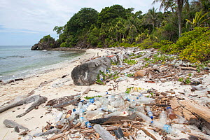 Plastic waste, mainly bottles,   washed up on beach of uninhabited island in the South China Sea. - Rick Price