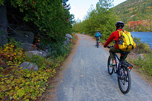 Cycling on a carriage road along a lake in Acadia National Park, Maine, USA. October 2013. Model released.  -  Tim  Laman