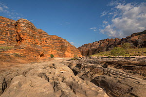 Dry river bed leading to the extraordinary array of banded, beehive-shaped cone towers comprising the Bungle Bungle Range. The rock formations are caused by erosion of karst sandstone, Purnululu Natio...  -  Jurgen Freund