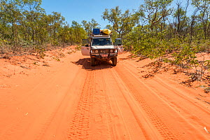 Four wheel drive car on a red sand road from Broome to Cape Leveque Kimberley, Western Australia. July 2016. - Jurgen Freund