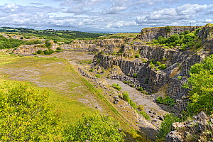 Minera Limeworks disused limestone quarry now a North Wales Wildlife Trust Reserve, near Minera, west of Wrexham, North Wales UK, August. - Alan  Williams