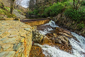 Weir at the top of Rhaeadr Mawddach waterfall, part of hydroelectric electricity generation system showing outlet lower left Afon, Mawddach, Coed y Brenin Forest, near Dolgellau Snowdonia National Par... - Alan  Williams