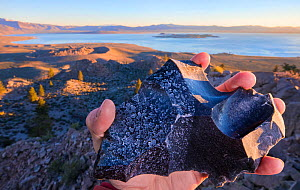 Piece of obsidian,  sprayed with water from the Pacific ocean (right)  and  with high mineral content water from Mono Lake (left) . Mono lake is three times saltier than the Pacific Ocean, and highly...  -  Floris  van Breugel