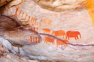San rock-art paintings of elephants and people, Cederberg Wilderness, South Africa - Chris Mattison