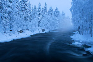 Long exposure of Kitka River with snowy forest, Kayla, Finland, January 2014.  -  Werner Bollmann