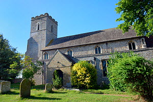 All Saints Church which has over 40 swift nestboxes in the belfry and a thriving colony of breeding Common swifts (Apus apus), Worlington, Suffolk, UK, July.  -  Nick Upton
