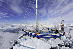 Sailing boat trapped into the ice, Spitsbergen, Svalbard, Norwegian archipelago, Norway, Arctic Ocean, July 2014. - Franco  Banfi