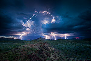 Lightning storm, Western Australia. December 2013. Image stacking / composite composed of three consecutive images.  -  Paul Williams