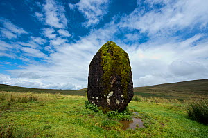 Maen Llia standing stone composed of intraformational conglomerate from Old Red Sandstone, attributed to the Bronze Age, Brecon Beacons National Park, Powys, Wales, UK  -  Will Watson